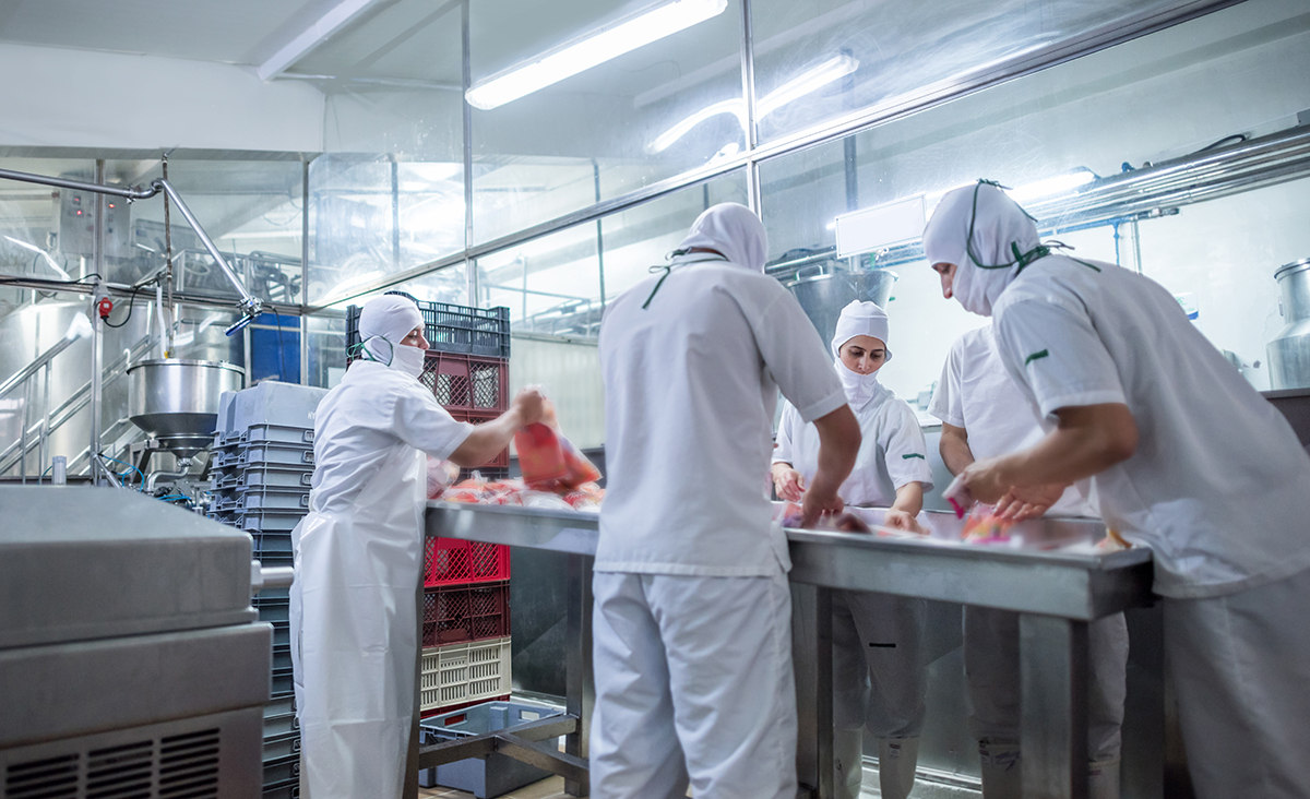 Food Safety Group of people working at a food factory